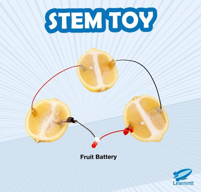 STEM Toy: Fruit Battery (For Age 9-12)