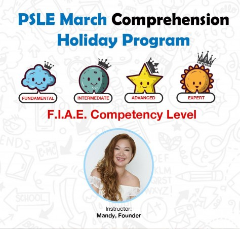 PSLE March Comprehension Holiday Program